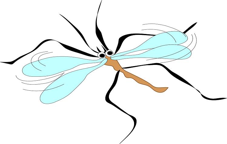 mosquito-pixabay